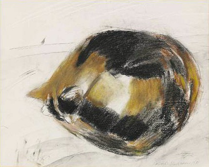 Tortoise Shell Cat, Elizabeth Blackadder