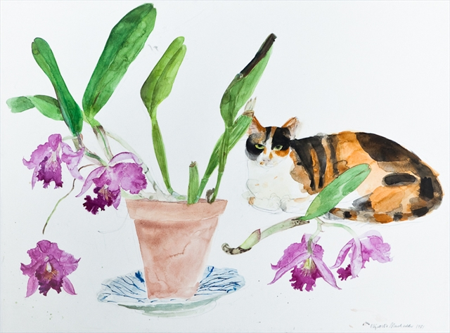 Elizabeth Blackadder, Cat and Flowers