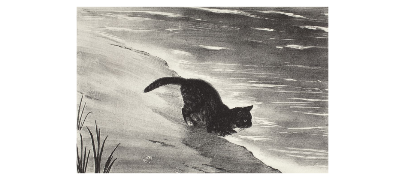 Cat by Waterside, Agnes Tait