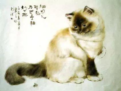 Gu Yingzhi, Chinese cats