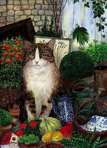 Feridun Oral, Gardening Cat