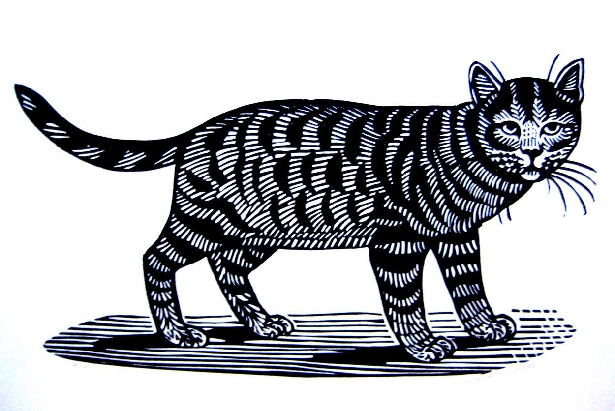 Linocut Cat, Edward Bawden