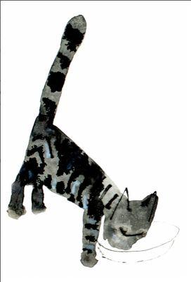 Kitten, Jozef Wilkon