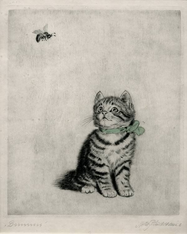 Kitten Looking at a Bee, Meta Pluckebaum