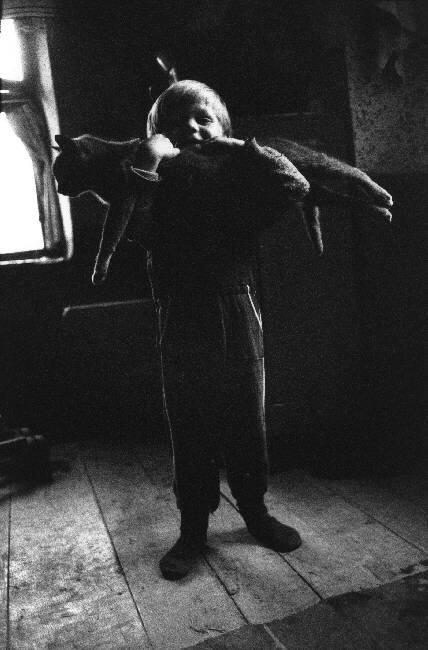 Josef Koudelka, Cat, ROMANIA Arad County Gernik, 1992
