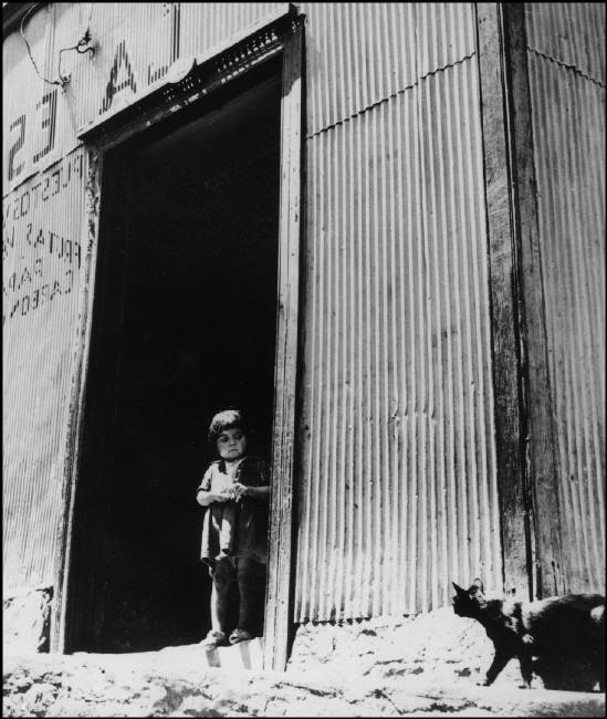 Child and Cat, Chile, 1992 Sergio Larrain