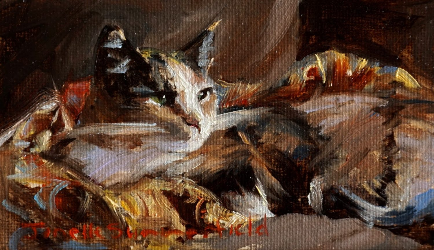 Jonelle Summerfield, Camo Cat