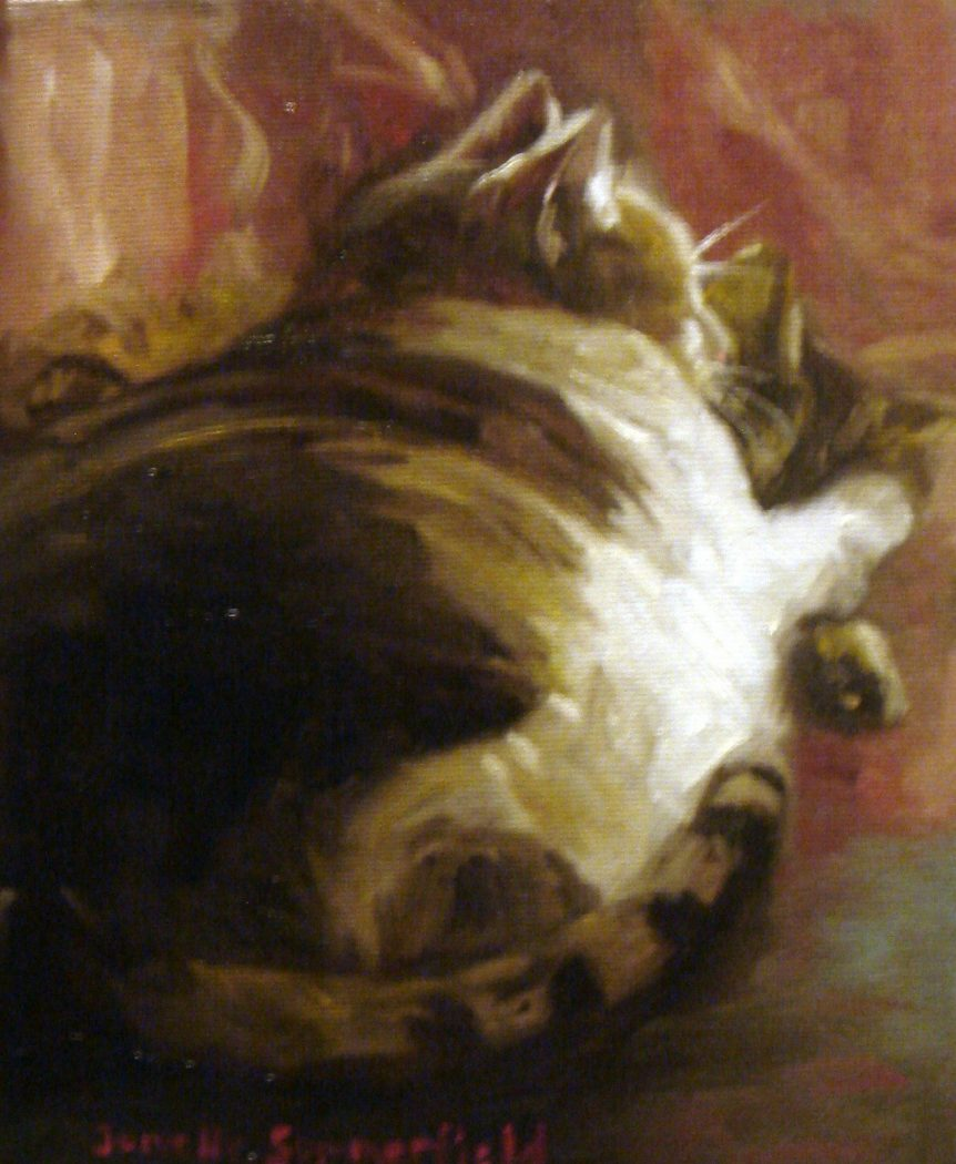 Jonelle Summerfield, Sleeping Cat