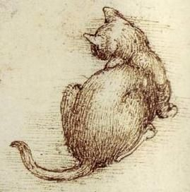 Leonardo da Vinci - Detail from Cats in motion, c.1513-16 - Pen and ink with wash over black chalk - Windsor, Royal Library 12363